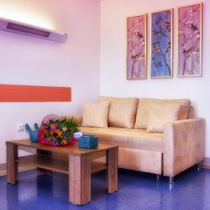 σαλόνι ασθενή